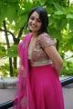 Nikita Thukral Hot Photos in Pink Churidar