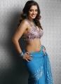 Actress Nikitha Thukral Hot in Saree Photoshoot Photos