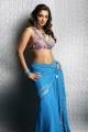 Actress Nikita Thukral Hot in Saree Photoshoot Photos