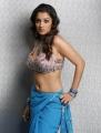 Actress Nikita Thukral Hot Spicy Saree Photoshoot Photos