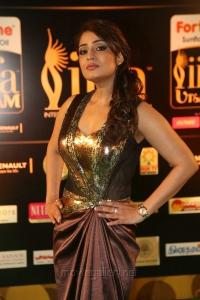 Nikitha Thukral Hot Pics @ IIFA Utsavam Green Carpet