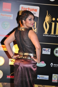 Telugu Heroine Nikitha Hot at IIFA 2016 Photos