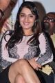 Actress Nikita Thukral Hot Photos @ Terror Logo Launch