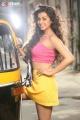 Tamil Heroine Nikki Galrani Hot Photoshoot Stills