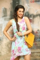 Tamil Actress Nikki Galrani Hot Photoshoot Stills