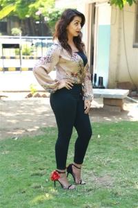 Nikki Galrani New Hot Pics @ Kalakalappu 2 Press Show