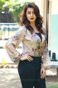 Actress Nikki Galrani New Hot Pics @ Kalakalappu 2 Press Show