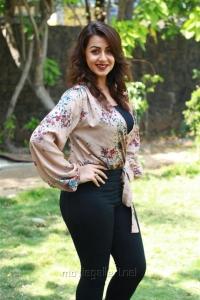 Actress Nikki Galrani New Pics @ Kalakalappu 2 Press Show