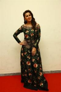 Actress Nikki Galrani New Pictures