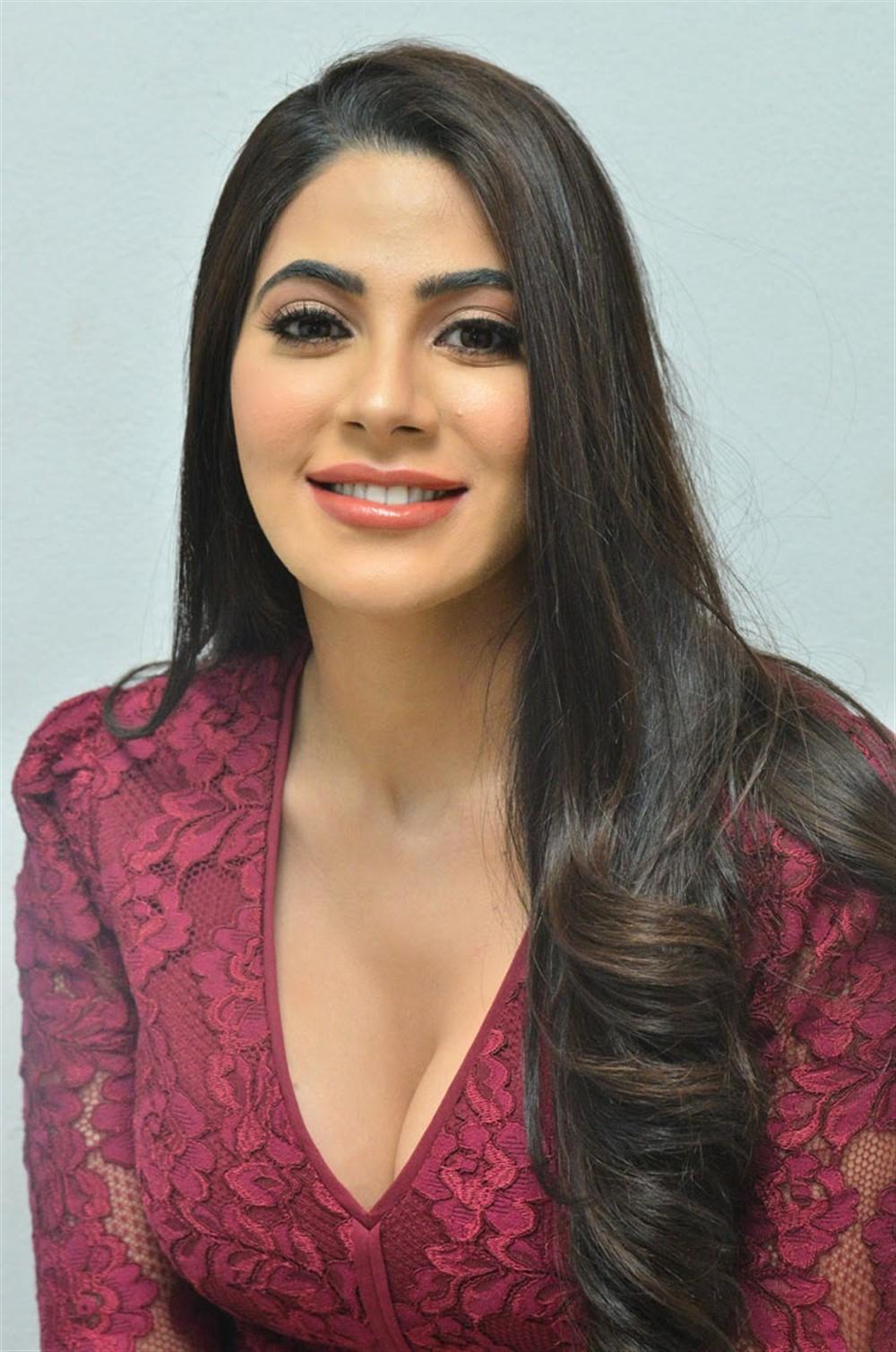 Actress Nikki Tamboli Hot Stills @ Chikati Gadilo Chithakotudu Thanks Meet