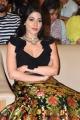 Actress Nikki Tamboli New Stills @ Thipparaa Meesam Pre Release