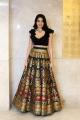 Thippara Meesam Movie Actress Nikki Tamboli Stills