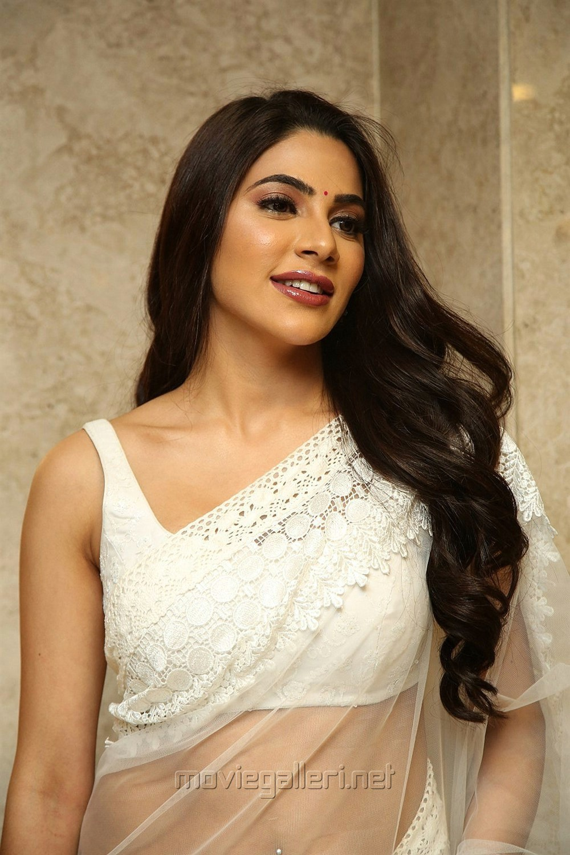 Kanchana 3 Movie Actress Nikki Tamboli White Saree Pics