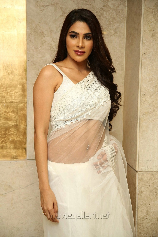 Actress Nikki Tamboli Pics @ Kanchana 3 Pre Release Event