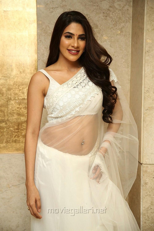 Actress Nikki Tamboli White Saree Pics @ Kanchana 3 Pre Release Event