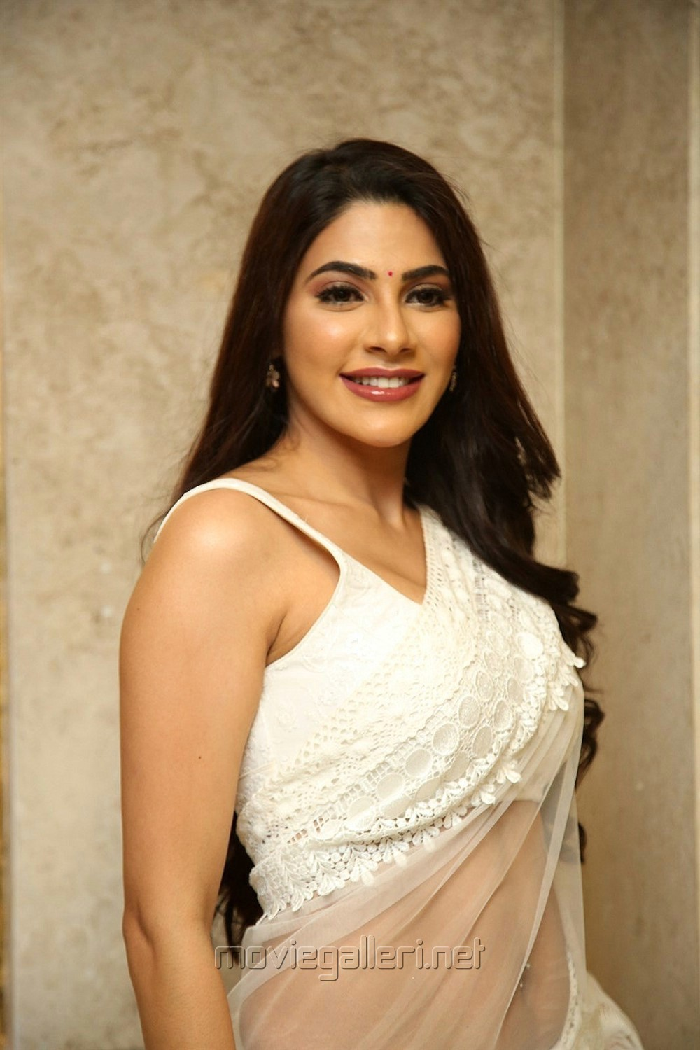 Kanchana 3 Movie Actress Nikki Tamboli White Saree Pics