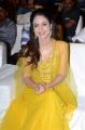 Anya Singh @ Ninu Veedani Needanu Nene Pre Release Photos