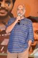 Ramajogayya Sastry @ Ninu Veedani Needanu Nene Pre Release Photos