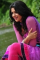 Deeksha Seth Images in Nippu