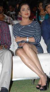 Telugu Actress Nisha Agarwal Hot Photos in Bandage Dress