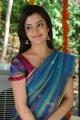 Nisha Agarwal Saree Hot Photos