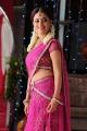 Telugu Actress Nisha Agarwal Hot Stills in Pink Transparent Half Saree