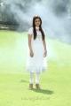 Nisha Agarwal Cute Pictures in White Churidar