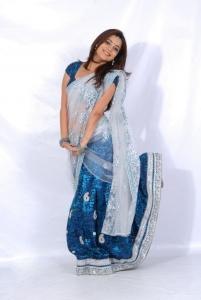 Nisha Agarwal Hot in Saree Photoshoot Stills