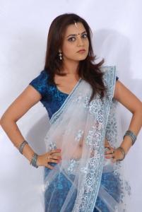 Actress Nisha Agarwal in Transparent Half Saree Photoshoot Stills