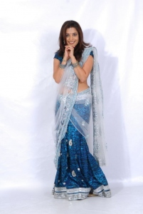 Actress Nisha Agarwal Hot Transparent Half Saree Photoshoot Stills