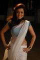 Solo Telugu Movie Heroine Nisha Agarwal  Saree Hot Stills