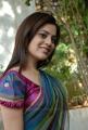 Actress Nisha Agarwal Hot Stills in Uppada Pattu Saree