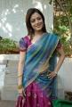 Actress Nisha Agarwal in Uppada Silk Saree Hot Stills