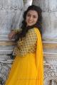 Nisha Agarwal Cute Pics in Yellow Churidar @ Saradaga Ammayilatho