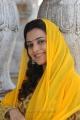 Nisha Agarwal Cute Pics in Yellow Churidar @ Saradaga Ammaitho