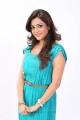 Nisha Agarwal in Light Blue Dress Photoshoot Pics
