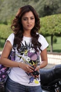 Saradaga Ammayilatho Movie Actress Nisha Agarwal New Pics
