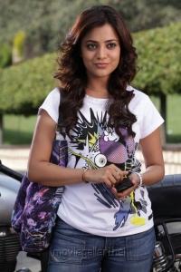 Saradaga Ammayilatho Movie Actress Nisha Agarwal Pics