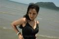 Nisha Kothari Latest Hot Pics