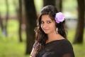 Oke Okka Chance Movie Actress Nisha Shah Black Saree Photos