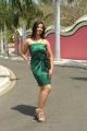 Oh My Love Heroine Nisha Shah Hot Stills