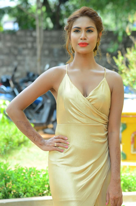 Actress Nishi Ganda Hot Stills @ Captain Rana Prathap Audio Launch
