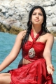 Actress Neethi Taylor Hot Images in Pelli Pustakam Movie