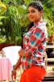 Actress Niti Taylor Images in Pelli Pustakam Movie