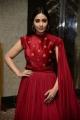 Actress Nivetha Pethuraj New Pics in Red Dress