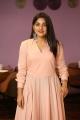 Actress Nivetha Thomas New Pics @ Brochevarevarura Movie Success Meet