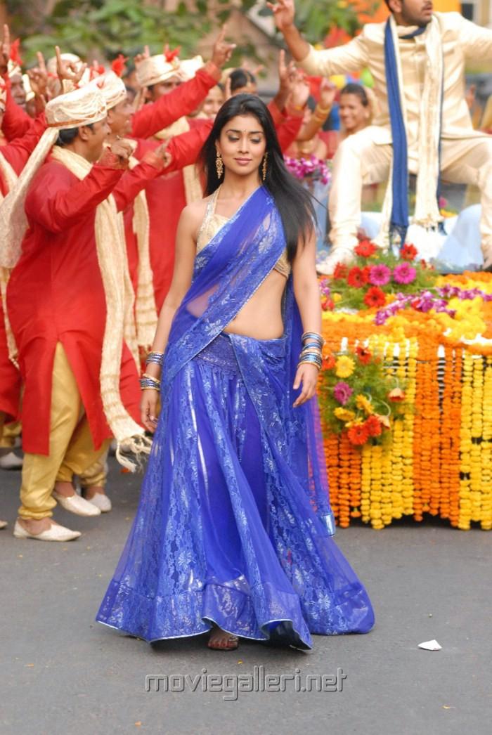 Shriya Saran Latest Saree Hot Stills