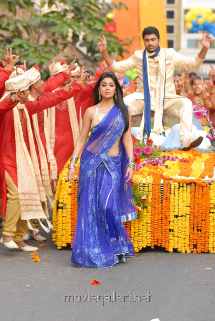 Nuvva Nena Shriya Saran in Saree Pics