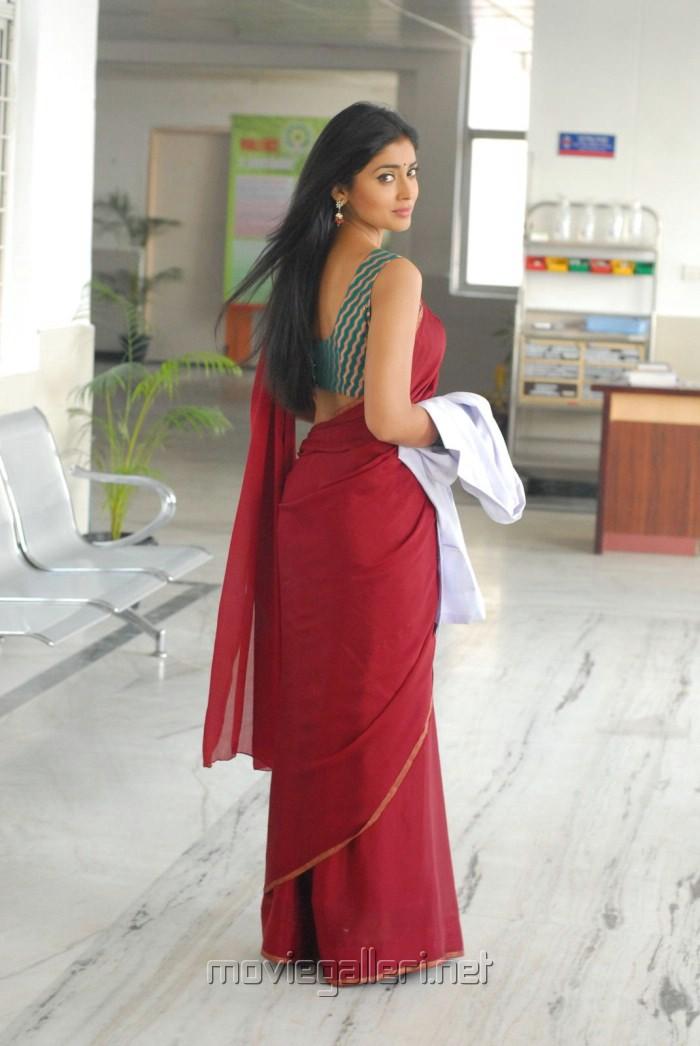 Shriya Saran Hot Saree Photos