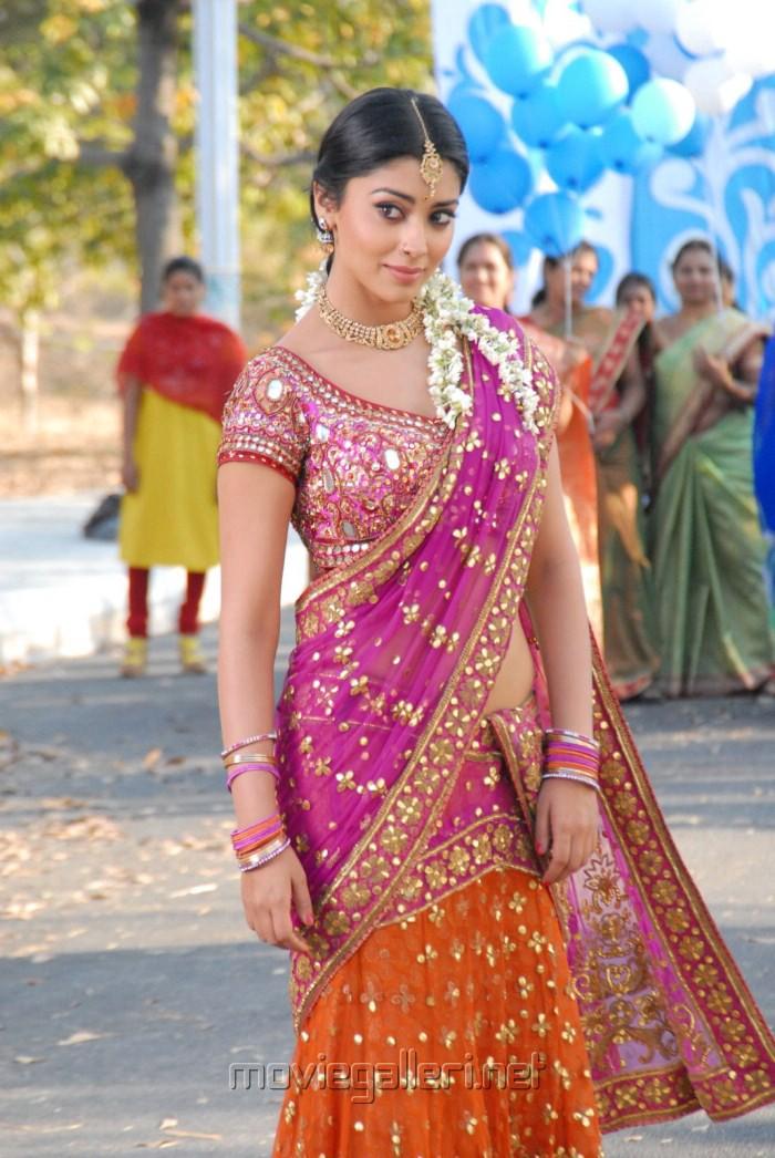 Shriya Saran Cute Saree Stills